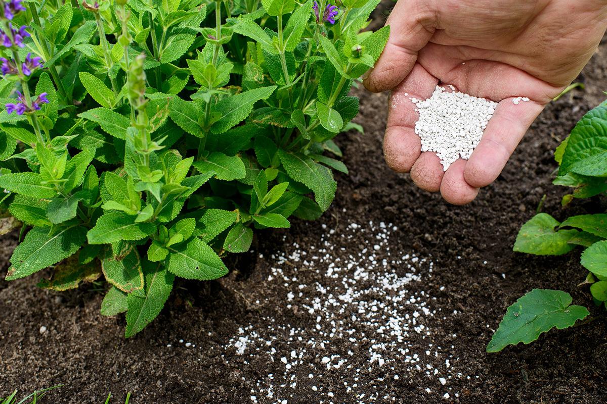 fertilizer-catalyst-market-size-worth-$33-billion-by-2027-|-cagr:-2.4%