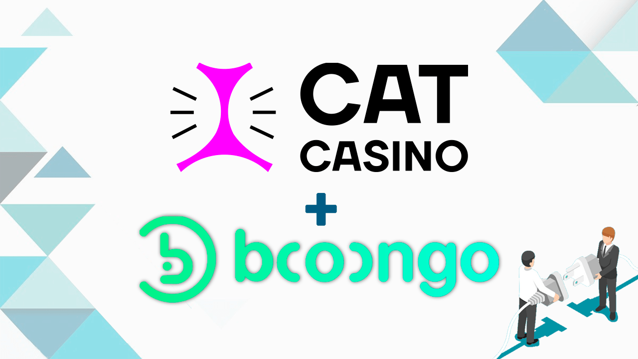 booongo-partners-with-catcasino-for-full-product-roll-out